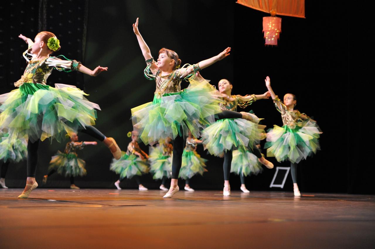 Cours danse Classique et Modern'Jazz 7 ans